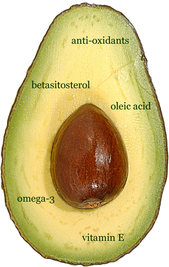 Health Benefits of Paltita Avocado Oil,Pucara International,Chile